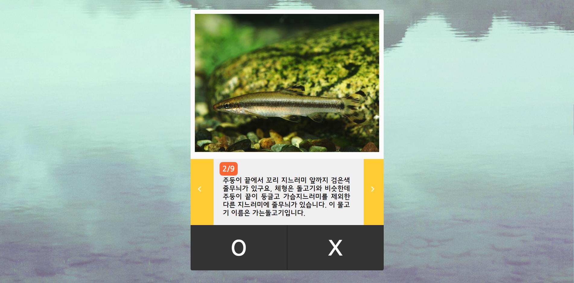 민물고기OX퀴즈_04