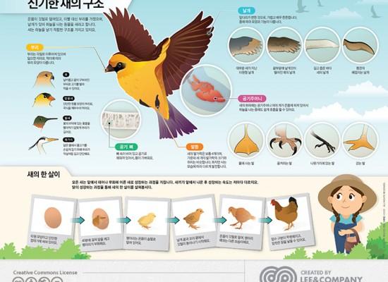 [미래엔] 브리태니커'새의구조'