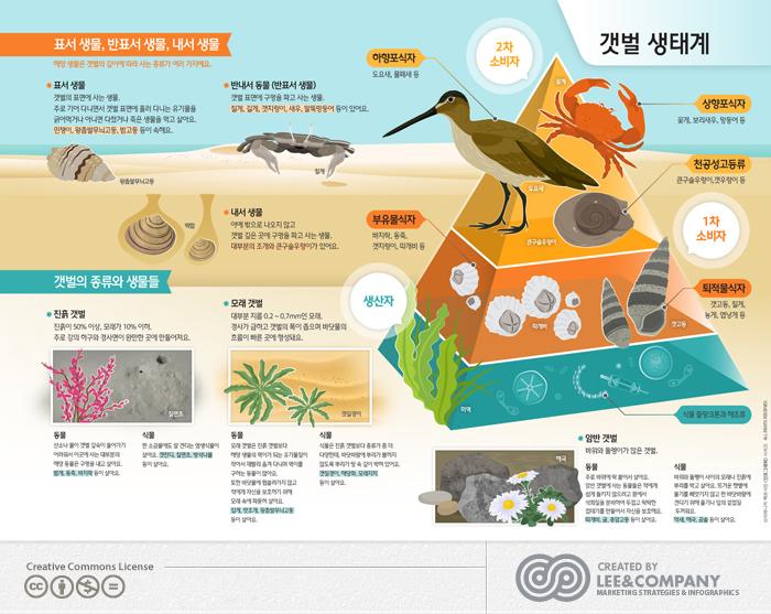 [미래엔]브리태니커'갯벌생태계'