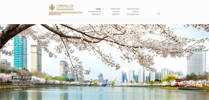 Versailles postnatal care center Website Development